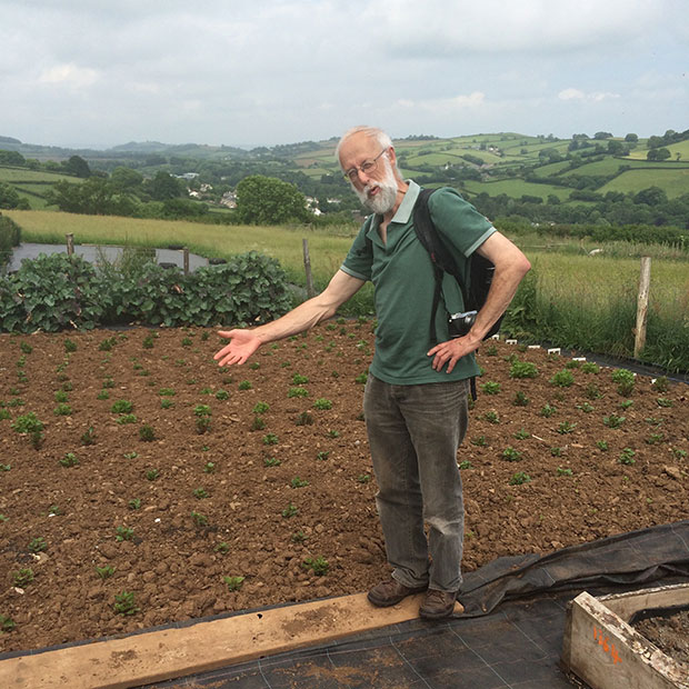 Stephen Barstow and our Ulluco crop