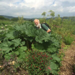 Stephen Barstow and giant rhubarb